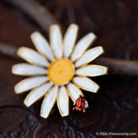 Weiss-花とてんとう虫アンティーク・ブローチ